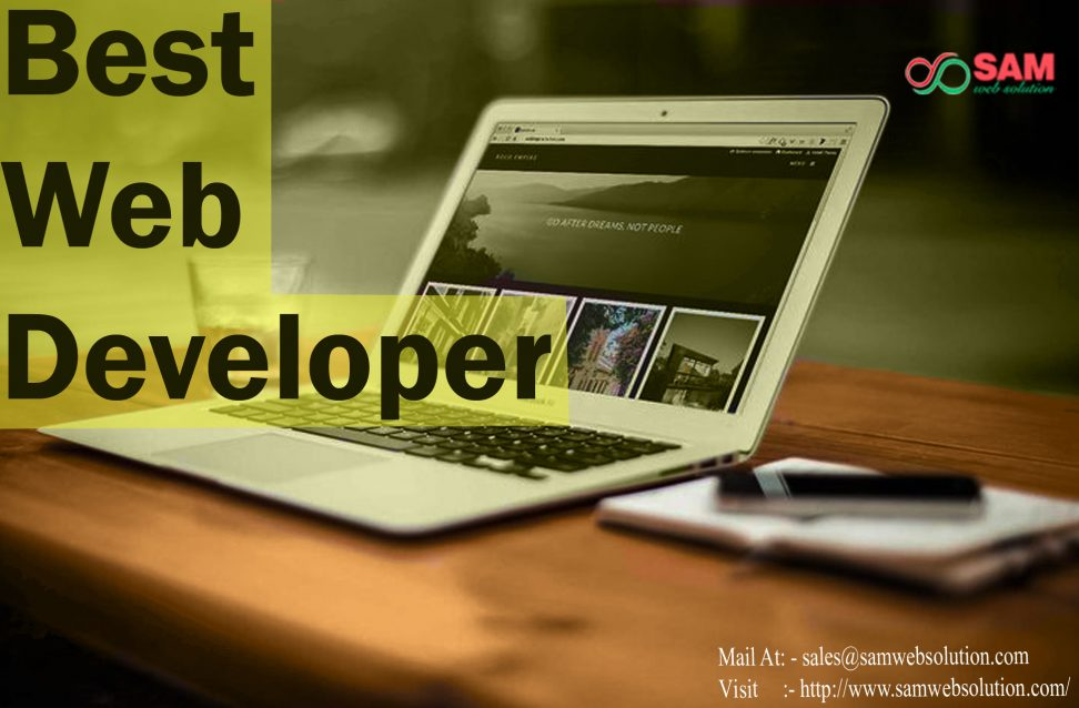 Professional Web Developer