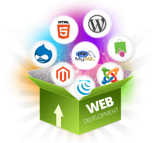 web-development-service